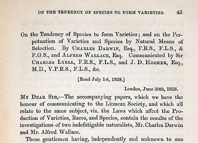 darwin origin of species essay Darwin's first two, relatively complete, explicit articulations of his theorizing on  evolution were his essay of 1844 and on the origin of species.